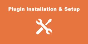 Plugin Installation & Setup Service